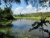 Farm for sale in Pitimbu - Lake on land