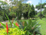 Country Home for sale in Joao Pessoa - Gardens