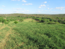 Farm for sale in Campina Grande - Grazing pastures
