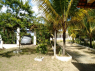 Country Home for sale in Recife - Main driveway to house and garage