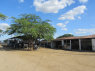 Farm for sale in Campina Grande - Milking station and barns