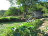 Farm for sale in Campina Grande - Riverside water pump house