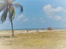 Land for sale in Joao Pessoa - View from plot