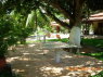 Country Home for sale in Joao Pessoa - Seating area under mango tree
